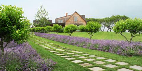 best-landscaping